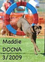 Maddie Tire