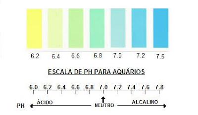 Medição do Ph da água Ph+escala