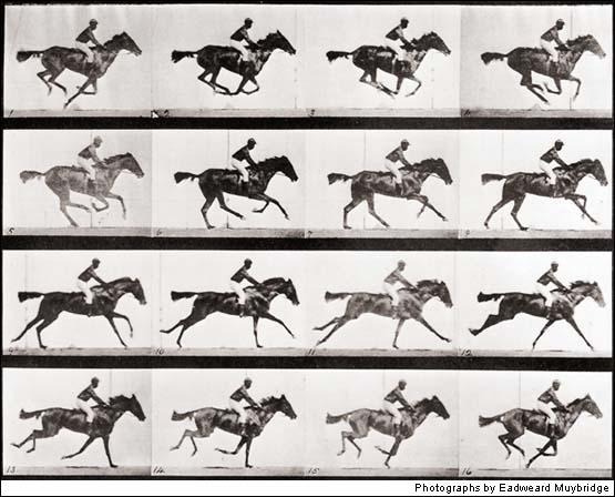 horses galloping.