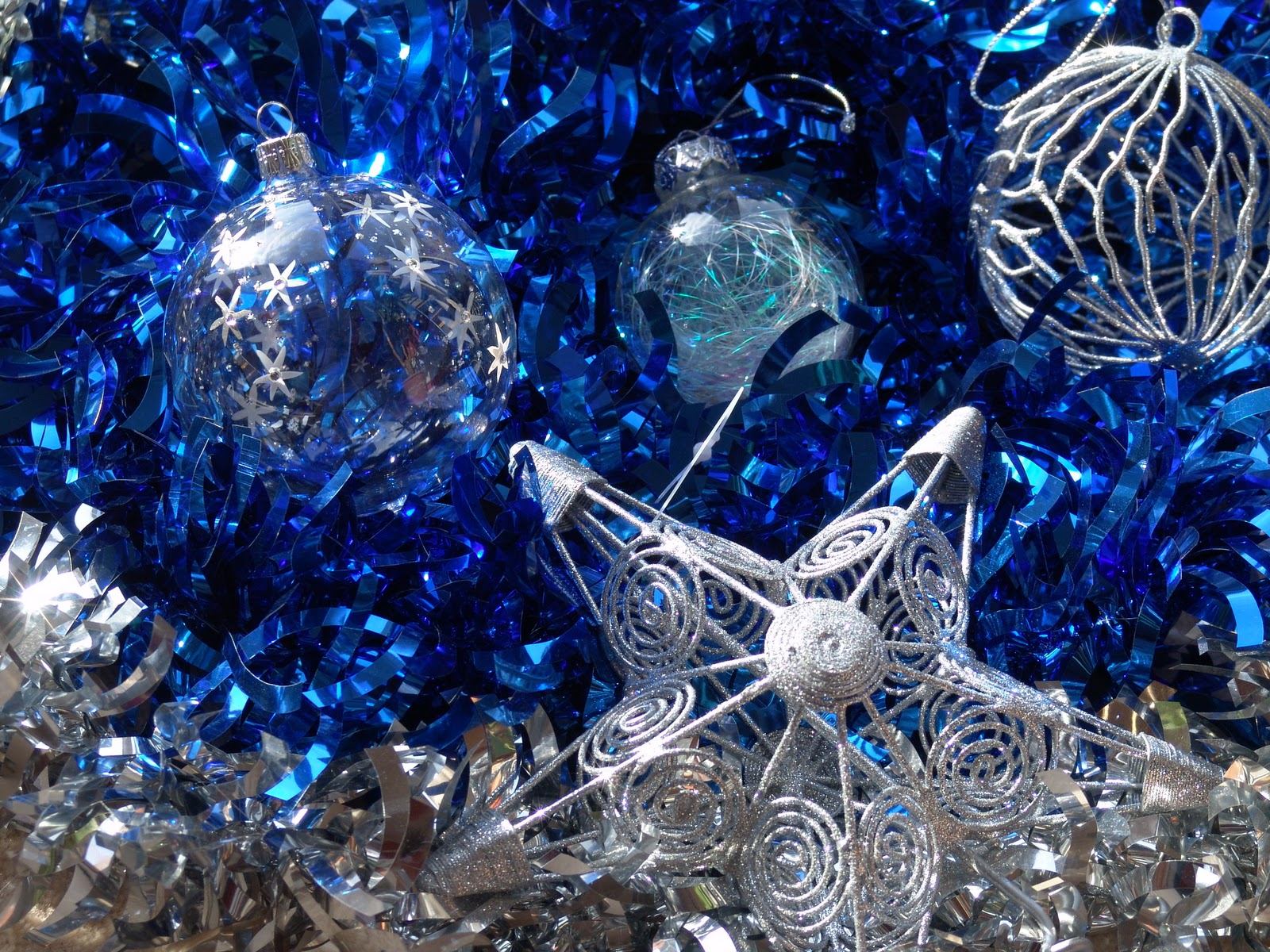 Blue christmas trees decorating ideas - Blue Tree Metamorphosis