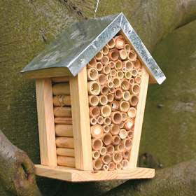 Shoestring Garden Bee House