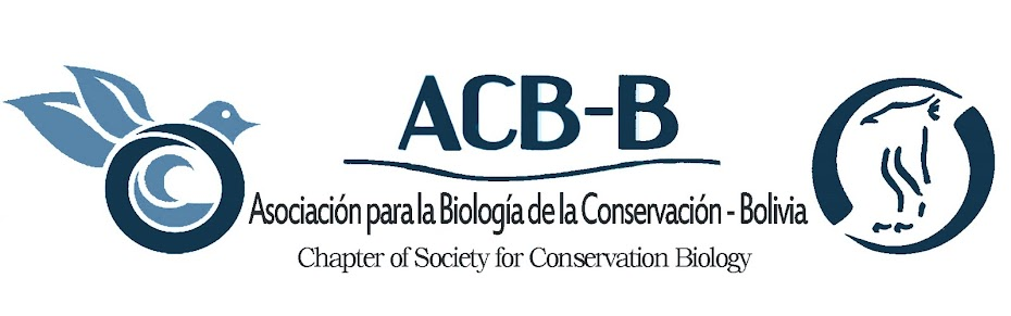 ACB - B