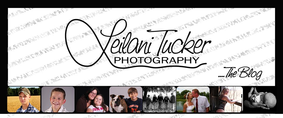 Leilani Tucker Photography Blog