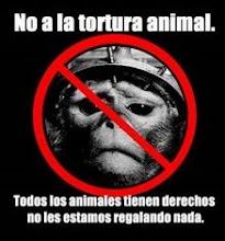 No a la tortura animal