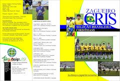 CAPA PARA DVD