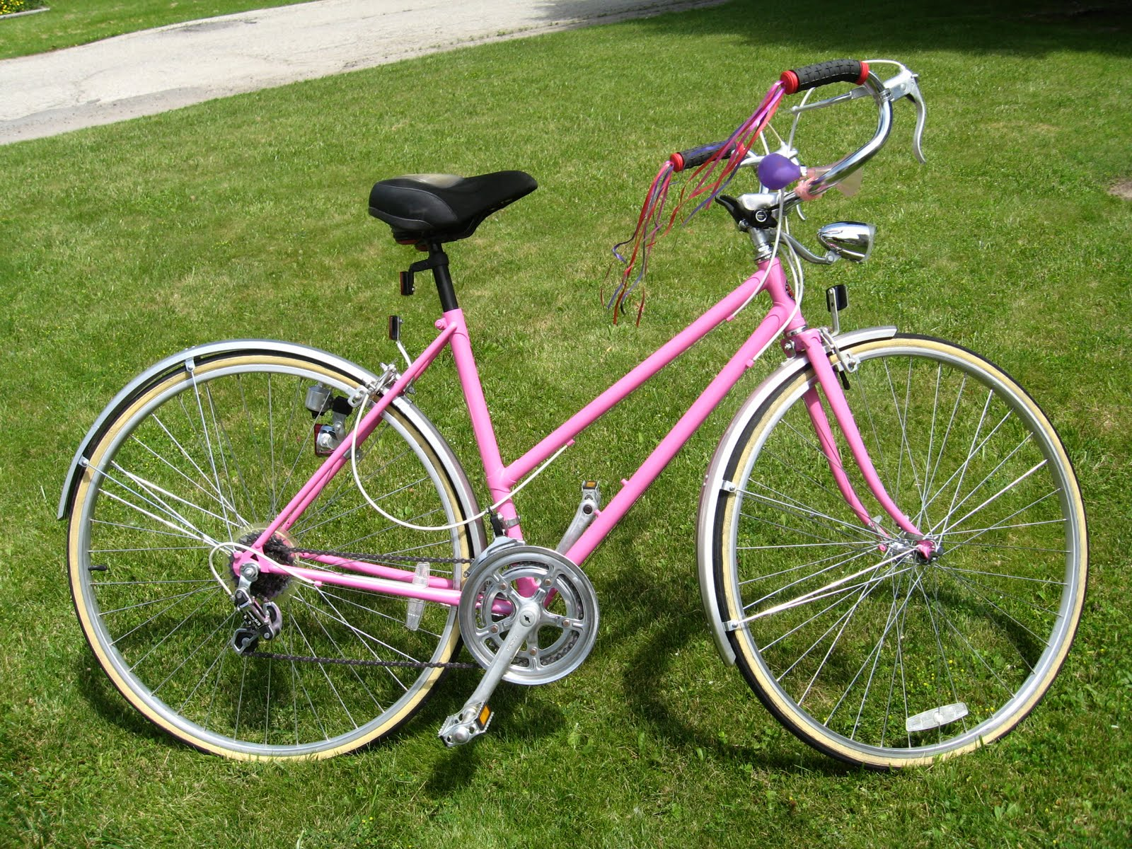 my bike is a used 20 year old schwinn that was a sad looking lavender. Black Bedroom Furniture Sets. Home Design Ideas