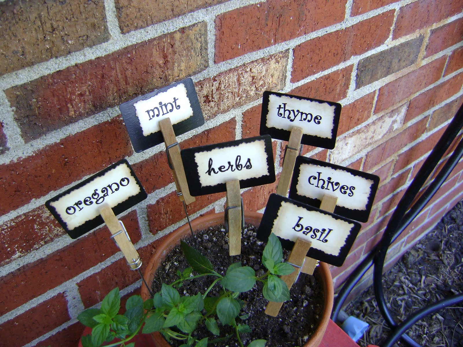 Shabby Garden Creations Super Cute Plant Markers