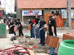 Imagini de la voluntariat