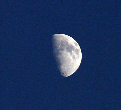 pilisvorosvar-daily-photo-moon
