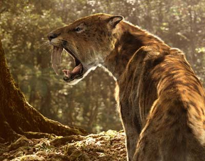 Sabertooth Tiger vs Bear http://biobabbler.blogspot.com/2010/07/why-you-should-never-arm-wrestle-saber.html
