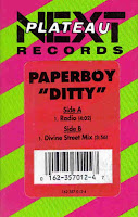 """Ditty"" Paperboy"
