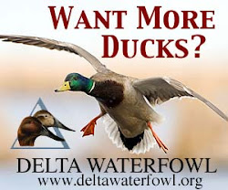 Support Delta Waterfowl