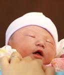 Anna Susan Cushman
