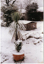 Jan '91 had similar weather
