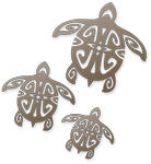 Turtle: Symbol of Longevity, Heaven's Blessings