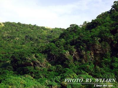 เกาะจวง ชลบุรี