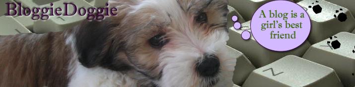 Bloggie Doggie