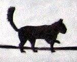 gato encerrado la gatera digital: