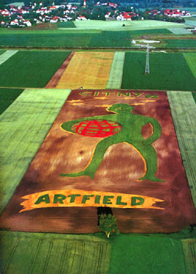 amazing human made crop circles