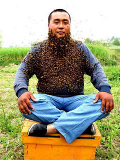 bee keeper with his bee