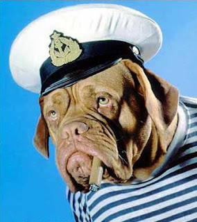 captain bulldog