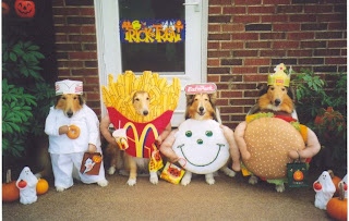mc donald mascot dog