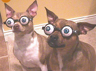 pop eye dogs