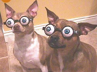 pop eye dogs