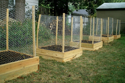 Pictures Garden Beds on We Are Starting Out With Five Small Beds All Lined