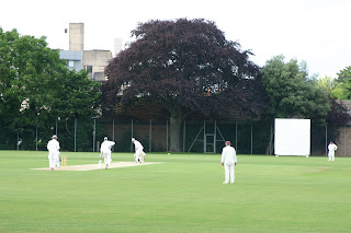 A Sunday evening cricket game at a nearby College. There are cricket pitches all around us.