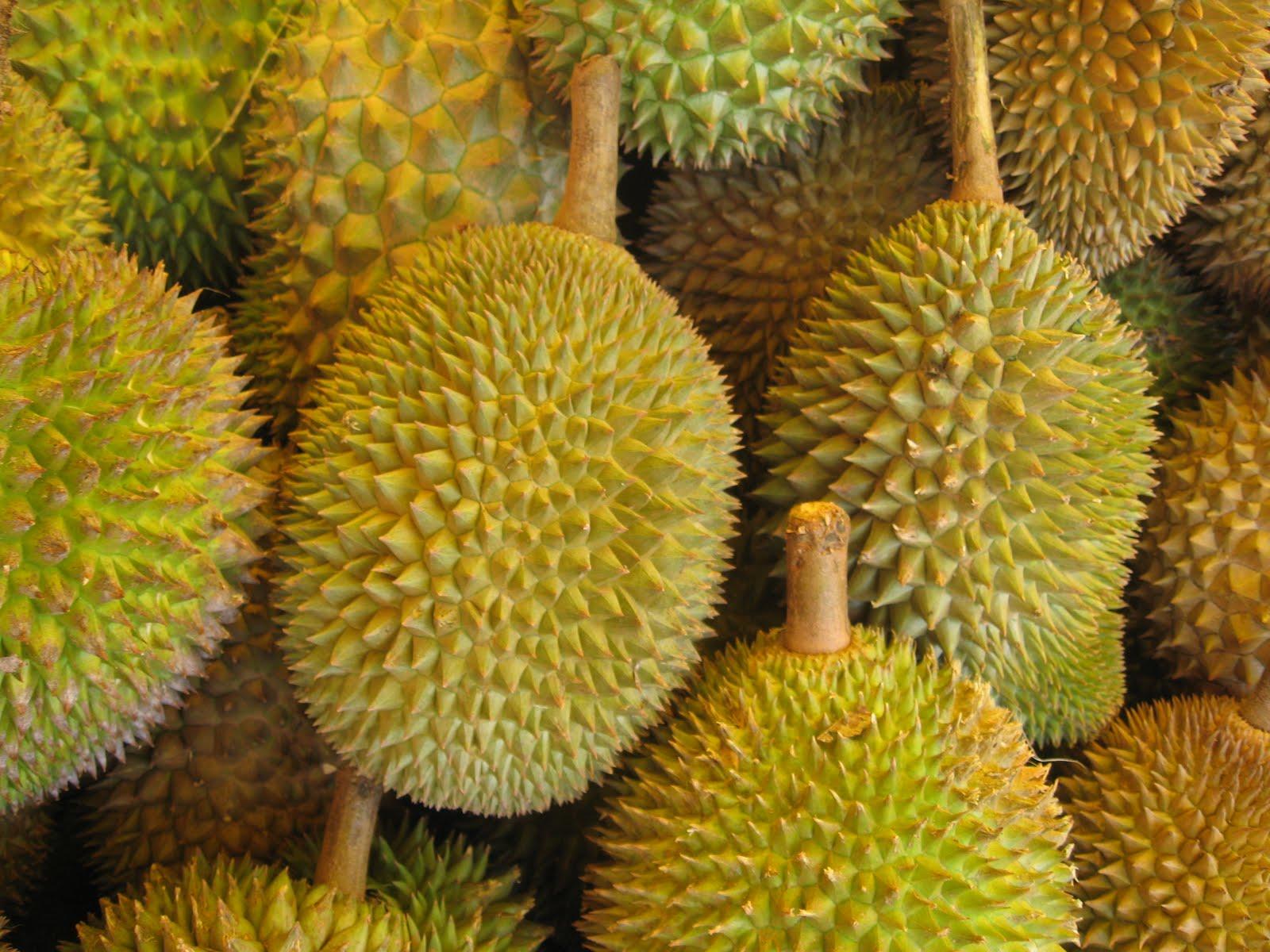ongzi 39 s secretgarden durian. Black Bedroom Furniture Sets. Home Design Ideas