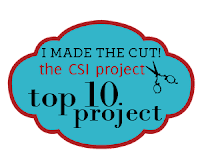 CSI Top 10 Projects