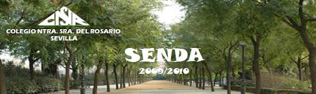 revistacolegiorosario2009/10