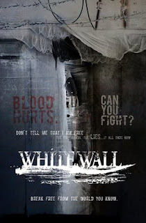 White Wall 2010 Hollywood Movie Watch Online
