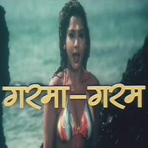 Garma Garam 2005 Hindi Movie Watch Online