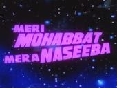 Meri Mohabbat Mera Naseeba (1995)