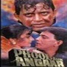 Phool Aur Angaar 1993 Hindi Movie Watch Online