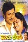 Haalu Jeenu (1982) - Kannada Movie
