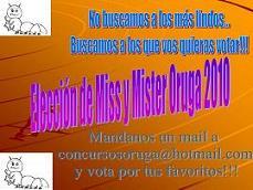 Premio: Elección de Miss y Mister Oruga 2010