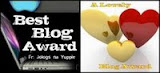 My Blogging Awards