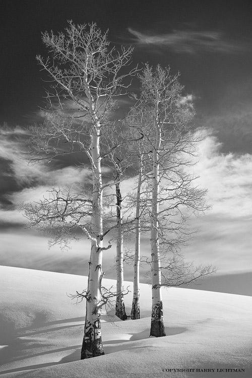 Photos Snow Ice Photography