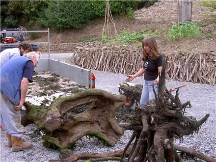 [More+driftwood.htm]