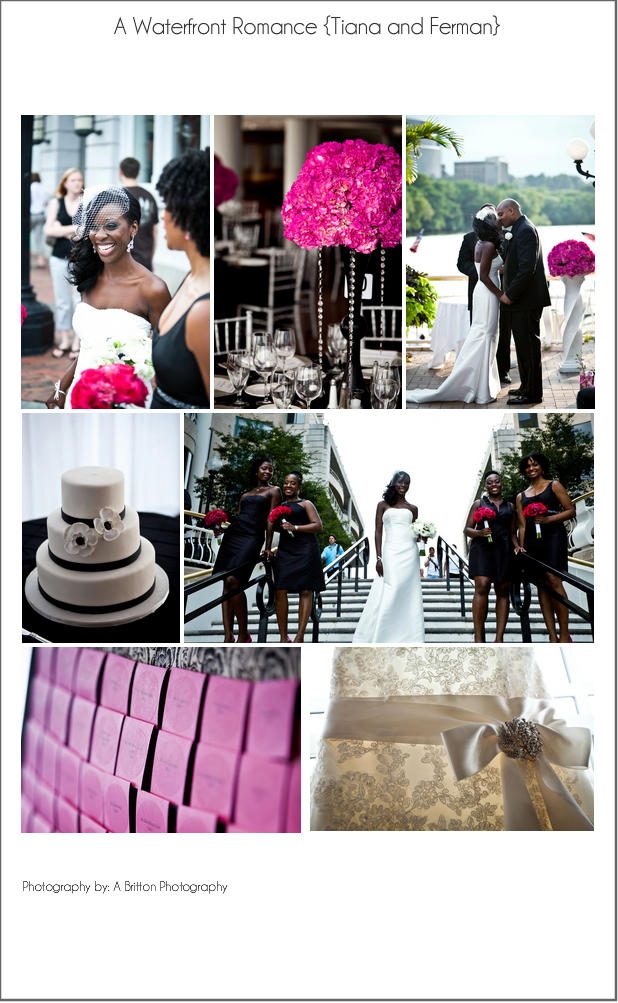 Check out this fun hot pink and black inspiration board I put together using