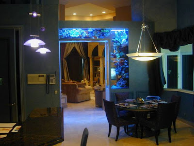 [Gambar: in_house_aquarium_6.jpg]