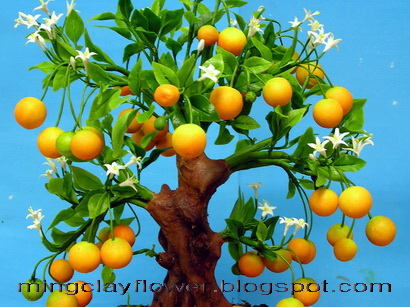 tangerine tree flowers Abundant fruits and flowersOdyssey Penelopes Test