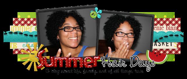 Summer Hair Days Blog Design