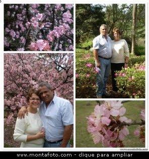 Trinta e dois anos de casados.