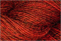 Close-up of Burning Bush yarn