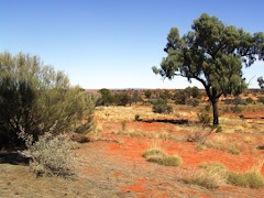 "the red ""dry"" outback"
