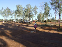 Curtin springs campground